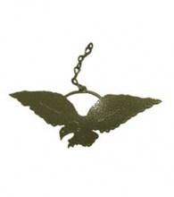 Eagle windcatcher